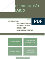 Sector Productivo Secundario-exposicion Final