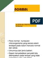 Flora Normal Blok 2 2 (1)