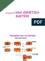 REKAYASA GENETIK BAKTERI