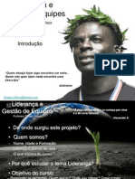 lideranaegestodeequipes-100420084718-phpapp02