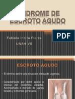 7. Síndrome de escroto agudo.pptx