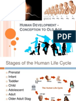 Human Development Conception to Old Age12