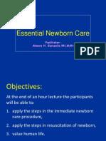 Essential Newborn Care 2013