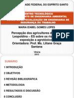 UFES - Apresentação de Monografia - Pós - Maria Izabel