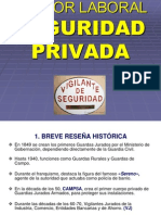 Sector Laboral Seguridad Privada