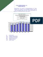 Caso10- ACNIELSEN (2)