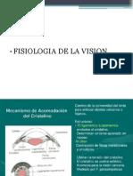 oftalmologia 2