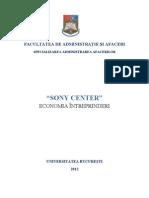 Sony Center - proiect teren