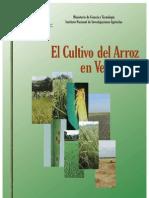 Cultivo de Arroz en Venezuela