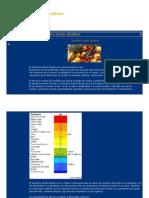 Equilibrio ácido alcalino