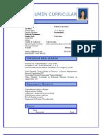 formato modelo ejemplo de resumen curricular para rellenarlo