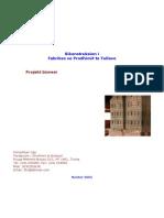 Model Plan Biznesi 2005 Agimi