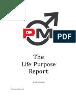 Life Purpose Report