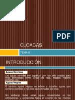 87412435-08-Cloacas.pdf