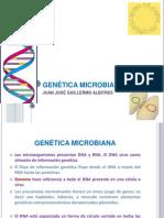 _7.Genética