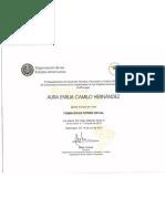 Certificación Tutoria Virtual Aura Camilo
