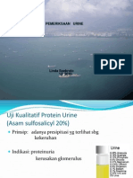 Kimia Urine PK
