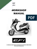 Peugeot Elystar EFI System