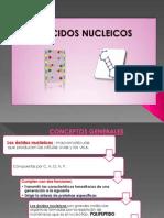 acidosnucleicosIRMA.
