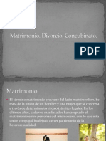 Matrimonio, Divorcio y Concubinato