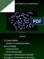 Chromosomal Patterns of Inheritance