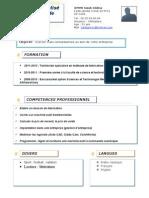 exemple-cv16.doc