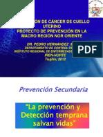 CA CÉRVIX PREVENCIÓN PROYECTO IREN NORTE Ago 2012