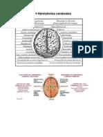 FAUSTA Hemisferios Cerebrales