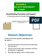 Sesi 6-How Milk Gets From Breast to Baby