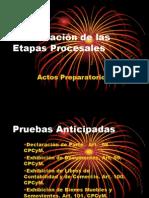 Clasificación de las Etapas Procesales