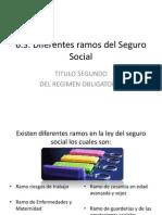 Ramos Del Seguro Social