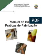 Manual de Boas Praticas CRIS MODELO