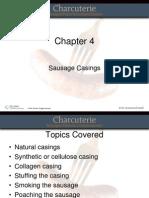 Sonnenschmidt Chapter 04 PPT