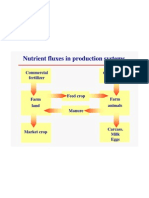 Nutrient Fluxes in Production Systems