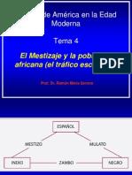 Dr. Serrera (Para Alumnos) Mestizaje