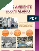 Medio Ambiente Hospitalario