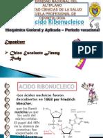ACIDO RIBONUCLEICO.pptx
