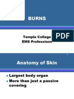 Burns (2)