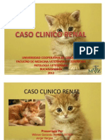 Caso Clinico Renal