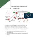 Controle da expressão gênica em procariontes