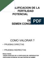 Calificacion de La Fertilidad Potencial