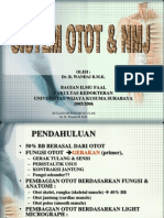 2. Sistem Otot & NMJ