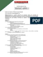 Perfil Descriptivo ICS