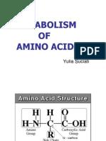 Bm2-Metabolisme Asam Amino