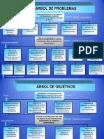 Arbol_de NI