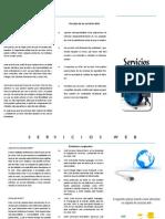 Triptico Servicios WEB