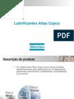 lubrificantesatlascopco-apresentaoclientes-091121133729-phpapp01 (1)