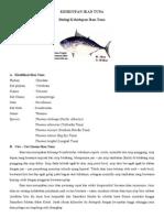 Kehidupan Ikan Tuna