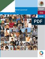 diagnóstico mundial de la juventud_2010