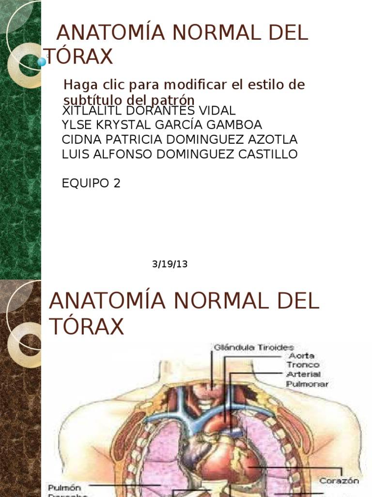 ANATOMIA NORMAL DEL TÓRAX modificada